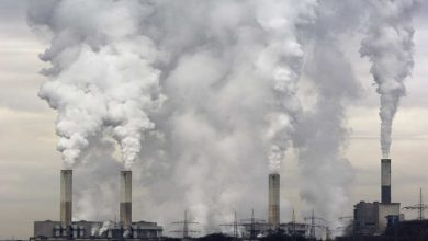 Polish Officials Suggest EU to Scrap Emissions Trading Scheme